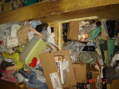 Hoarding Cleanup Services 11