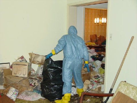 Hoarding Cleanup Services 301