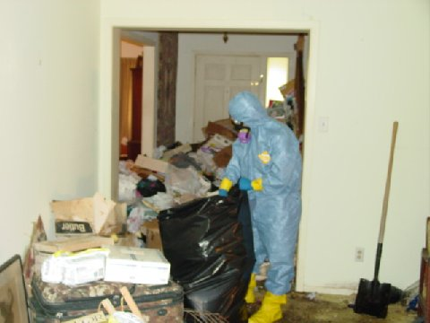 Hoarding Cleanup Services 3013