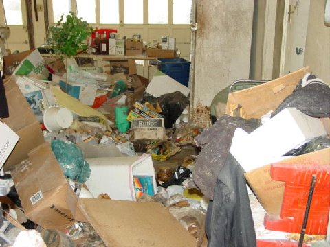 Hoarding Cleanup Services 39